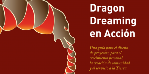 Guía Dragon Dreaming en acción